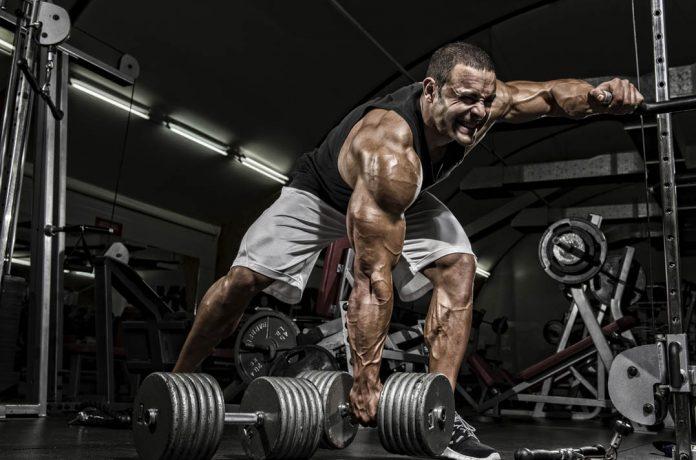 Culturista entrenamiento con mancuerdas para el crecimiento muscular